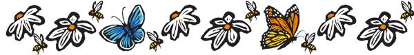 pollinator-oeffa-conference-2020